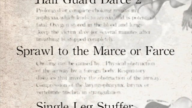 16 Sprawl to Marce or Farce Japanese
