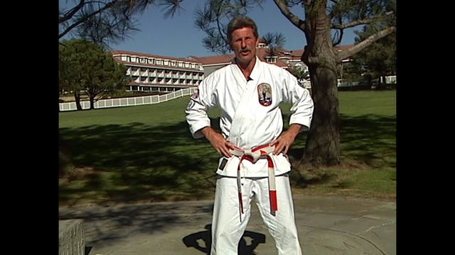 Isshin Ryu Karate Vol 02 by Kim Murray