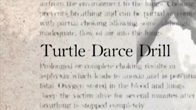 31 Turtle Darce Drill Darcepedia Engl...