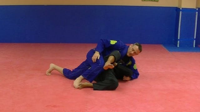 The Pillars: Side Control Mastery Vol...