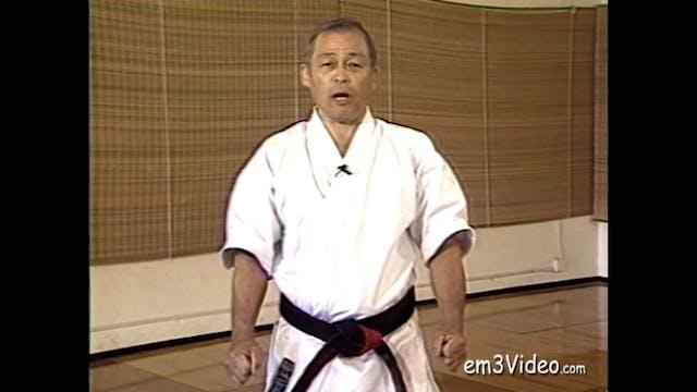Gosoku Ryu Karate Action Kumite & Free Sparring by Tak Kubota