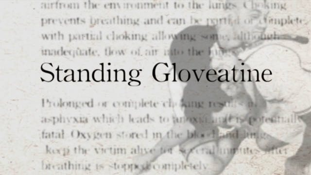 6 Standing Glovetine Darcepedia Japan...