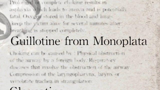 4 Guillotine from Monoplatata Darcepe...