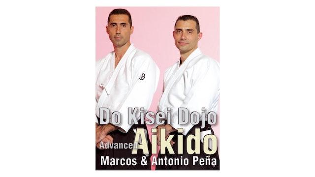 Advanced Aikido Kisei Dojo - Antonio & Marcos Pena