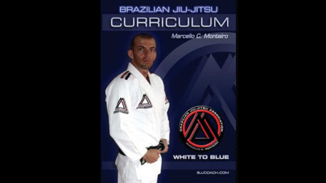 BJJ White to Blue Curriculum by Marcello Monteiro