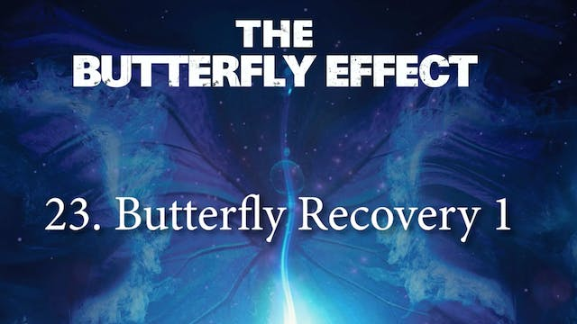 23 Butterfly Recovery 1 - Butterly Effect