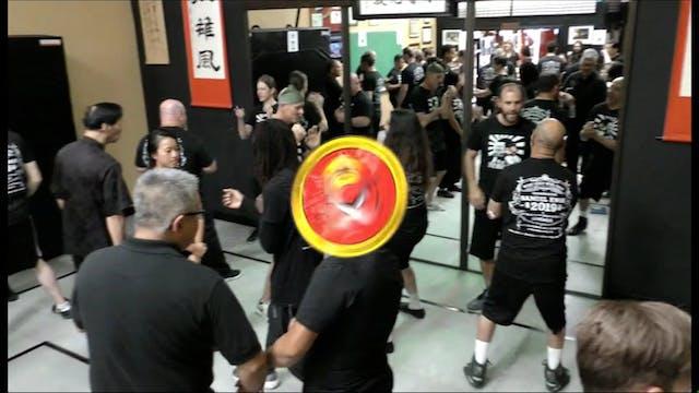 Wing Chun Sem 2019 Vol 1