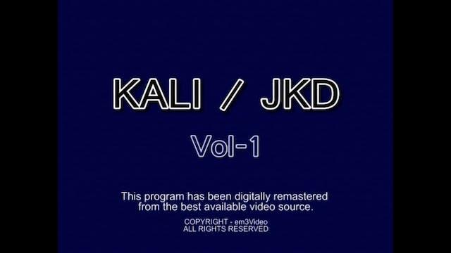 Dynamic Kali 1