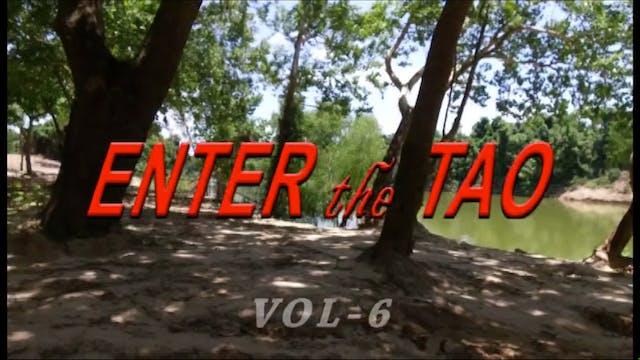 Enter the Tao 6