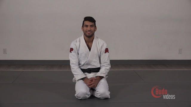 El Arte Suave Modern Jiu-Jitsu (Japanese) by Francisco Sinistro