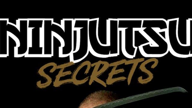 Ninjutsu Secrets 2: Ninja Sword with Stephen Hayes