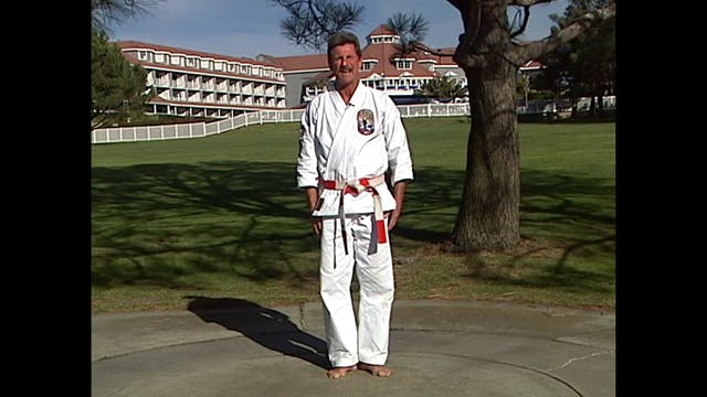 Isshin Ryu Karate Vol 04 by Kim Murray