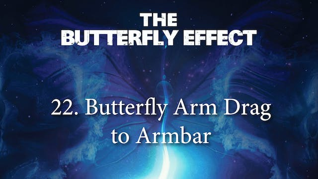 22 Butterfly Arm Drag to Back 2 - Butterly Effect