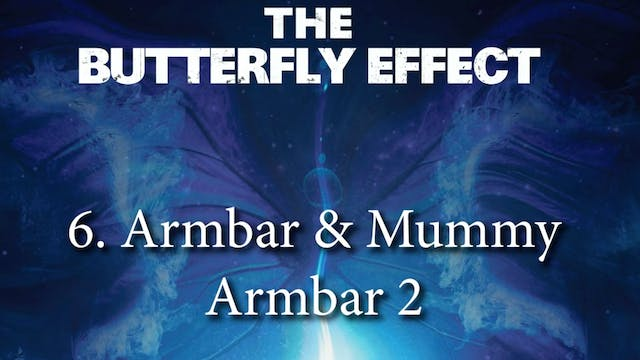 6 Japanese - Butterly Effect