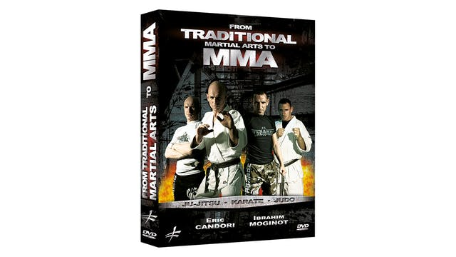 From Traditional Martial Arts to MMA