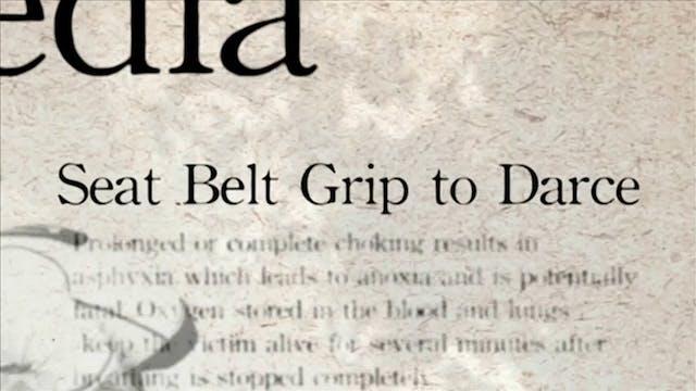 7 Seat Belt Grio to Darce Darcepedia ...