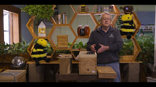 Chapter 5: How to Purchase Bees