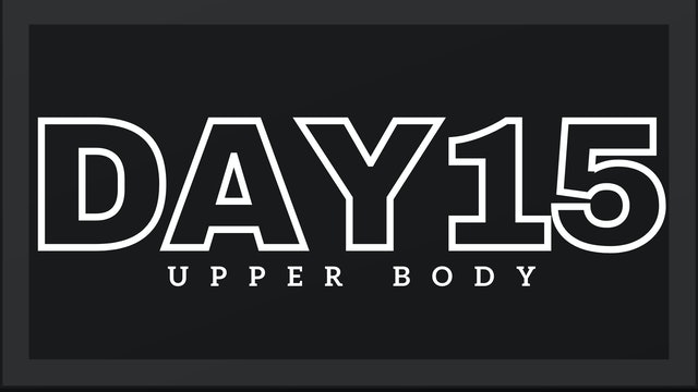 Phase 3 Day 1 - Upper Body