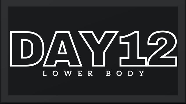 Phase 2 Day 5 - Lower Body