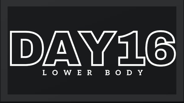 Phase 3 Day 2 - Lower Body