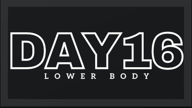 Phase 3 Day 2 - Lower Body