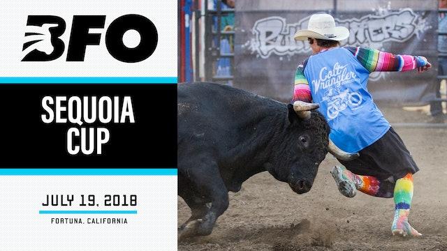 BFO Fortuna 2018