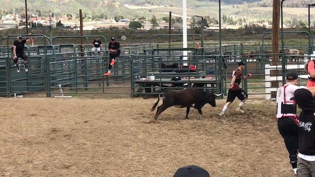 San Bernardino D Camp 2018