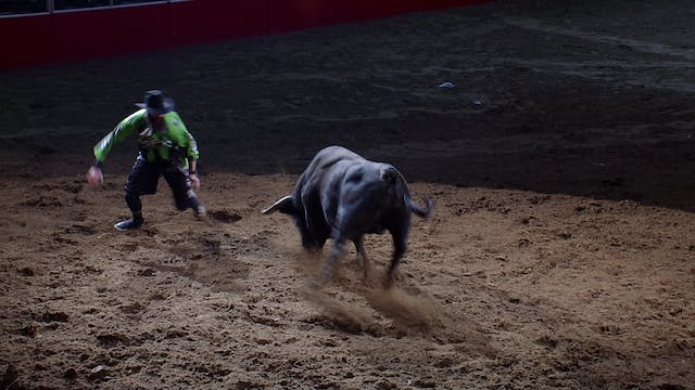2019 BFO San Antonio Rodeo - SECTION ...