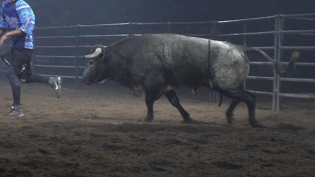 2019 Bulls After Dark - Aaron Mercer Slo-mo (Day 1)