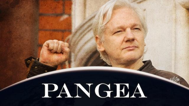 """Il """"crimine"""" di Assange: aver portato alla luce i crimini di guerra"""
