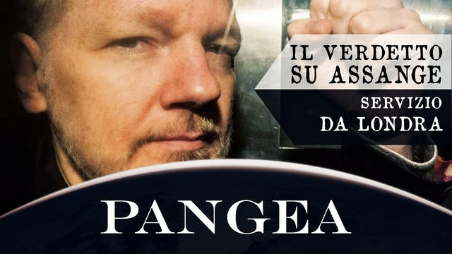 Il verdetto su Assange - Servizio da ...