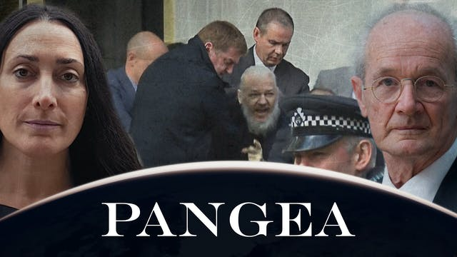Assange libero per la nostra libertà