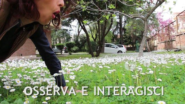 PERMACULTURA 1 - OSSERVA E INTERAGISCI