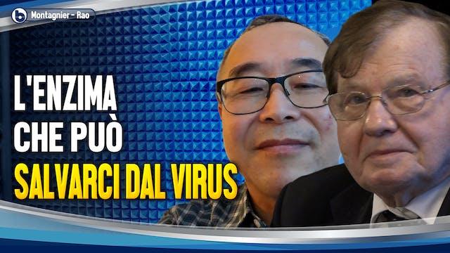 L'ENZIMA CHE PUÒ SALVARCI DAL VIRUS -...