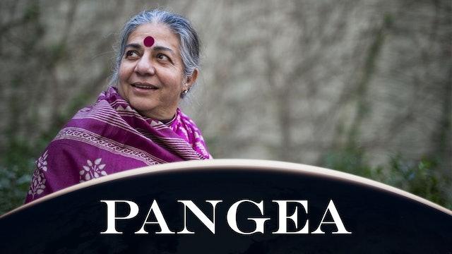 Intervista a Vandana Shiva: ribelliamoci a Bill Gates e al filantro-imperialismo