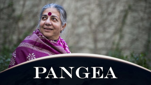 Intervista a Vandana Shiva: ribelliam...
