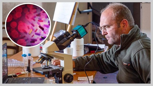 MICROBIOLOGIA DEL SUOLO. LA DURA VITA DI UN BATTERIO