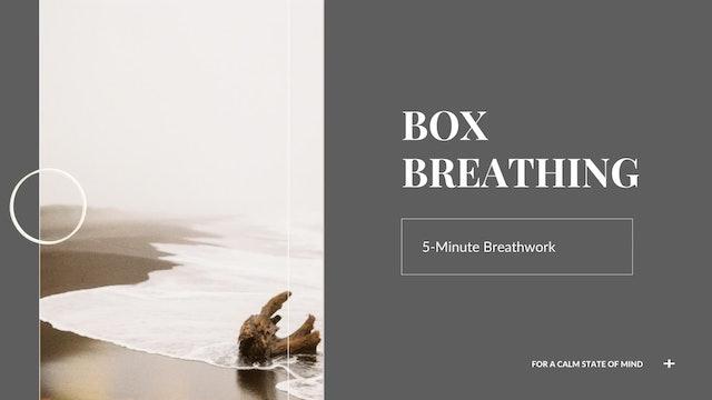 5-Minute Box Breathing