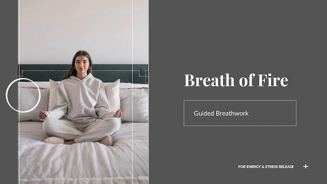 Beginner Breath of Fire Meditation