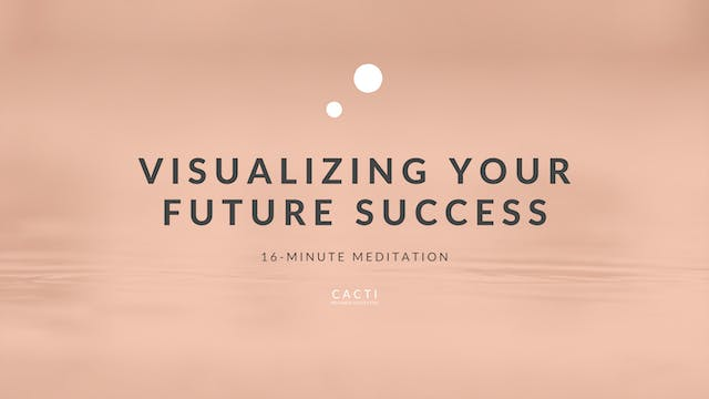 16-Minute Visualize Your Future Succe...