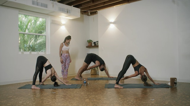 Yoga - Root Flow with Anne