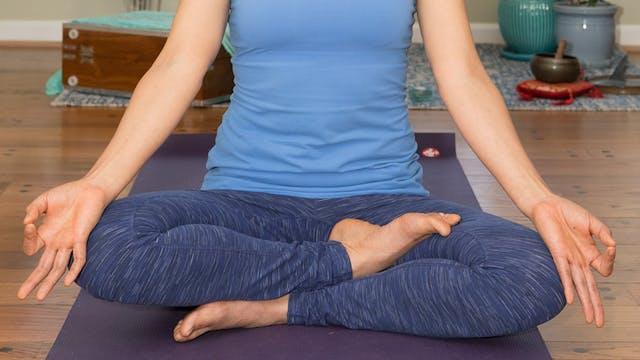 Pranayama and Meditation: visualizati...