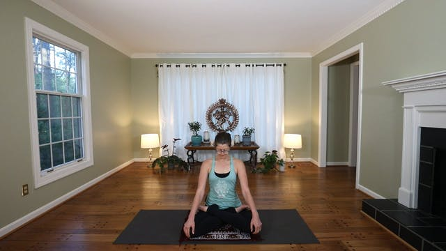 Pranayama & Meditation: Viloma and Om...