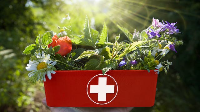 Homeopathy in Surgery and Advanced First Aid