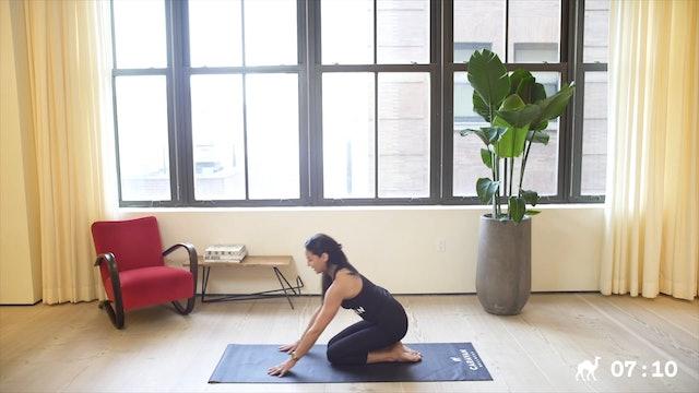 10 Min Yoga Arms