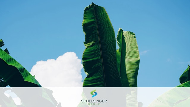 Schlesinger