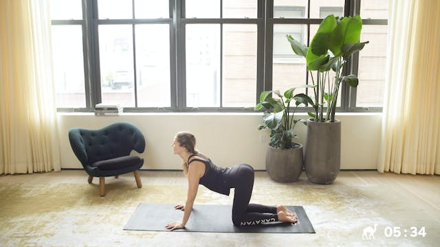 Special Today: 8 Min Energizing Routine