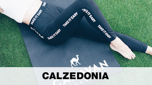 Calzedonia Partnership