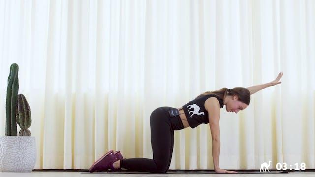 15 Min Core Workout