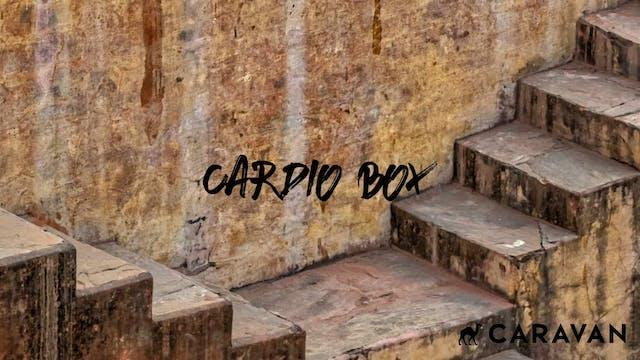 10 Min Cardio Box
